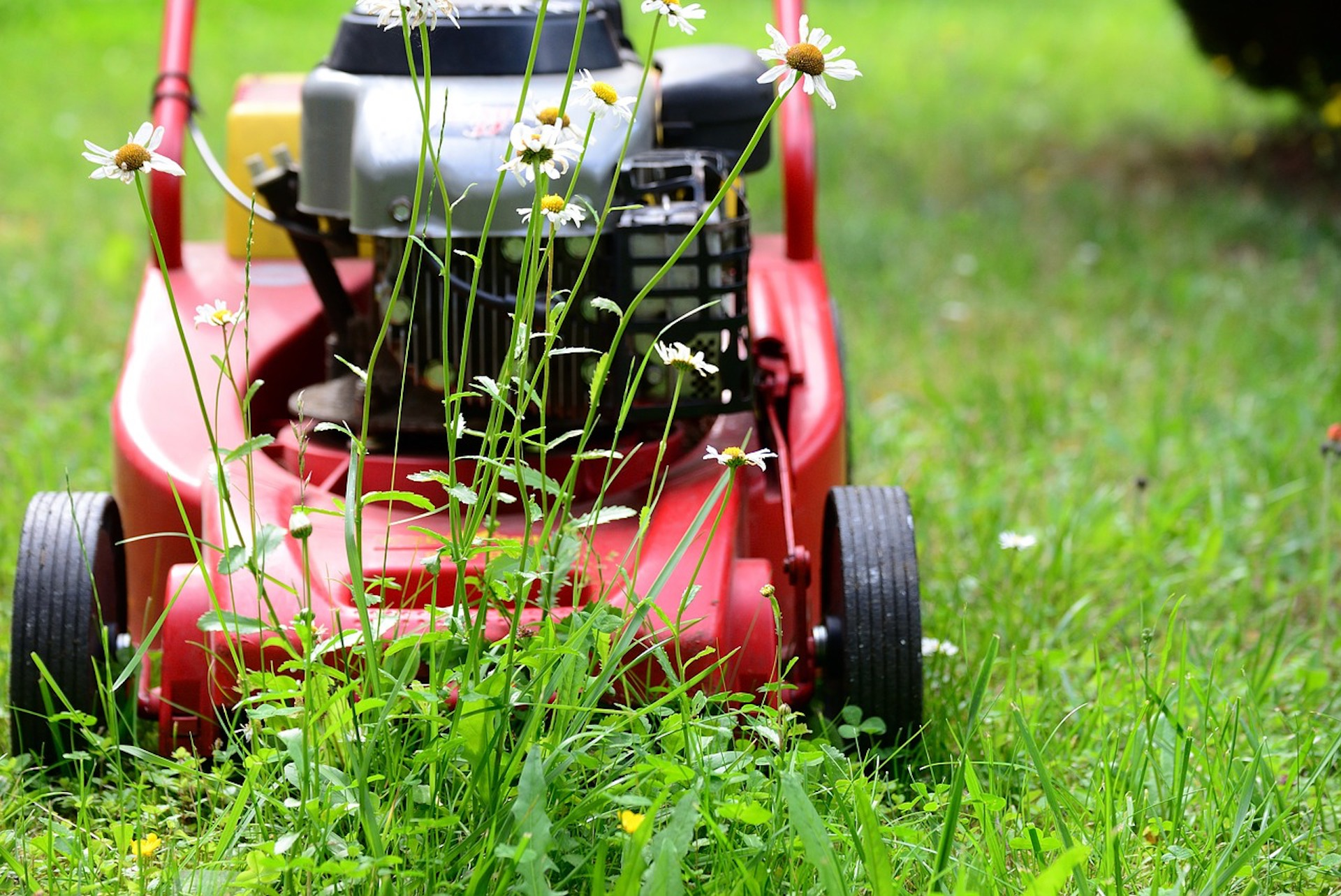 lawn-mower-5329533_1280